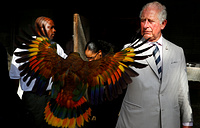 Britain's Prince Charles is seen in the Botanical Gardens during a visit to St. Vincent and the Grenadines, March 20