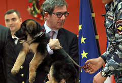 French Ambassador Jean-Maurice Ripert with German shepherd puppy Dobrynya