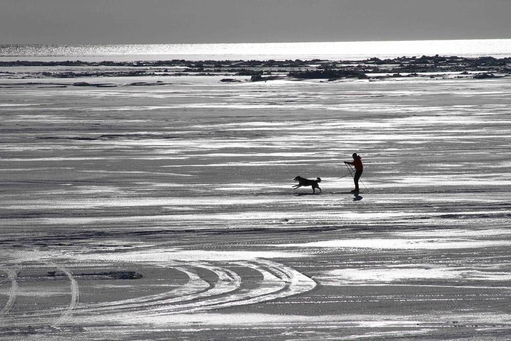 A skier on the ice of the Bering Sea