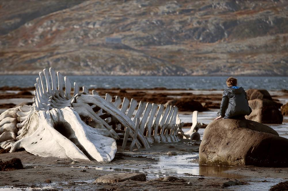 Leviathan is the filmmaker's interpretation of the Bible story of Job based on the modern Russian reality