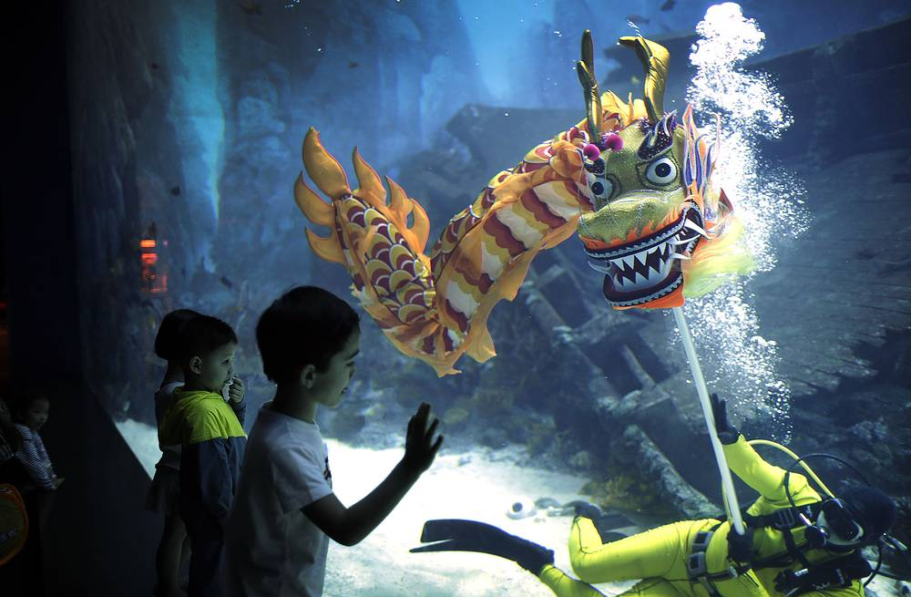 Children watching divers performance at the South East Asia Aquarium in Resorts World Sentosa in Singapore. The tradition of dragon dance performances is believed to bring blessings to guests for an auspicious Lunar New Year