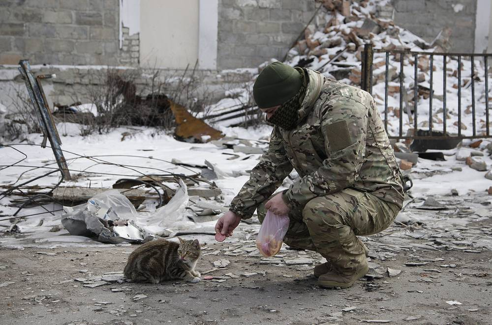 No casualties have been registered in Deblatsevo over the last 48 hours. Photo: A militiaman feeding a cat in front of destroyed buildings in the eastern Ukrainian city of Uglegorsk, not far from Debaltsevo