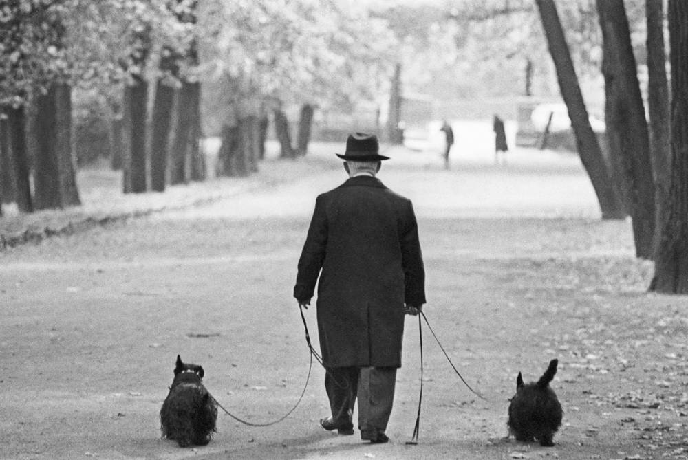 Mikhail Rumyantsev (clown Karandash) walking his dogs in Leningrad, 1976