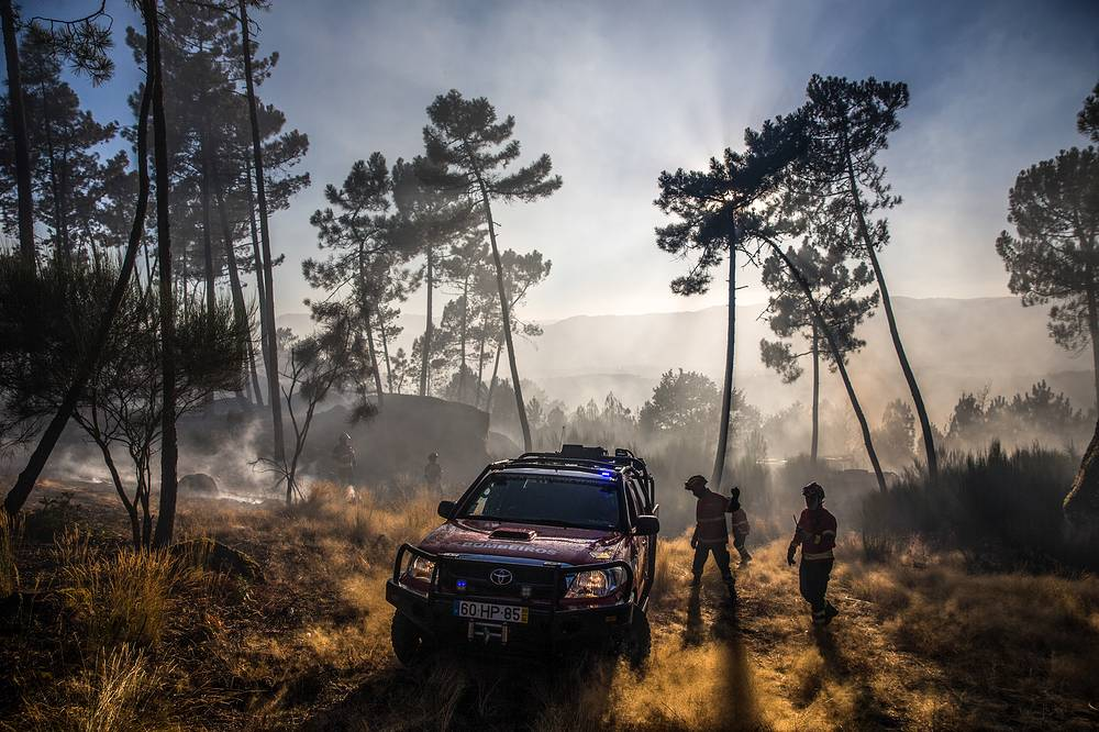 Local firefighters battling wildfires in Portugal, August 18