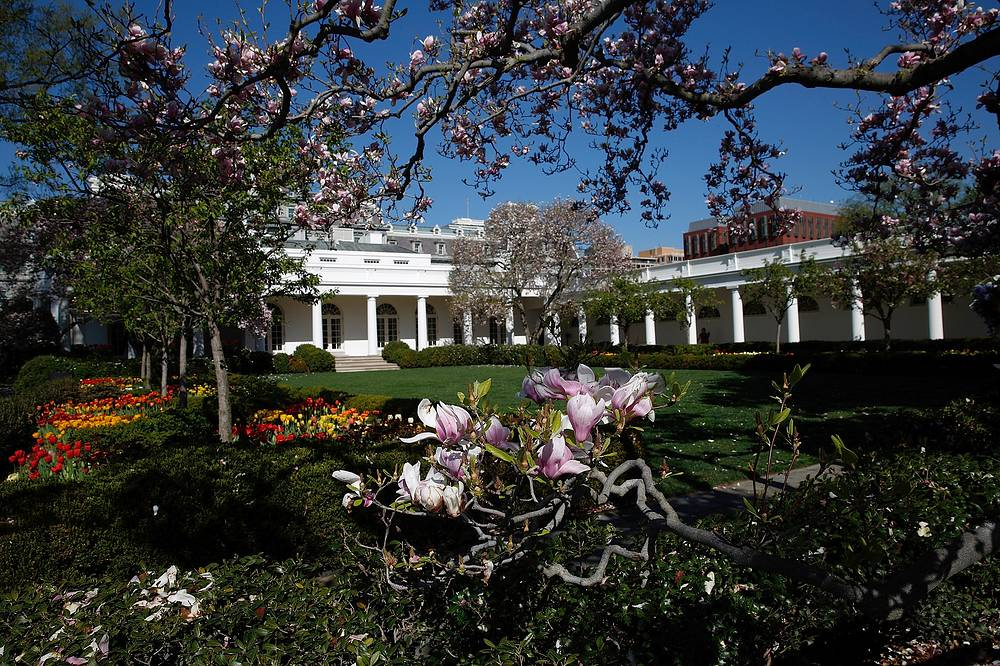 Flowers bloom in the Rose Garden outside the West Wing of the White House, 2015
