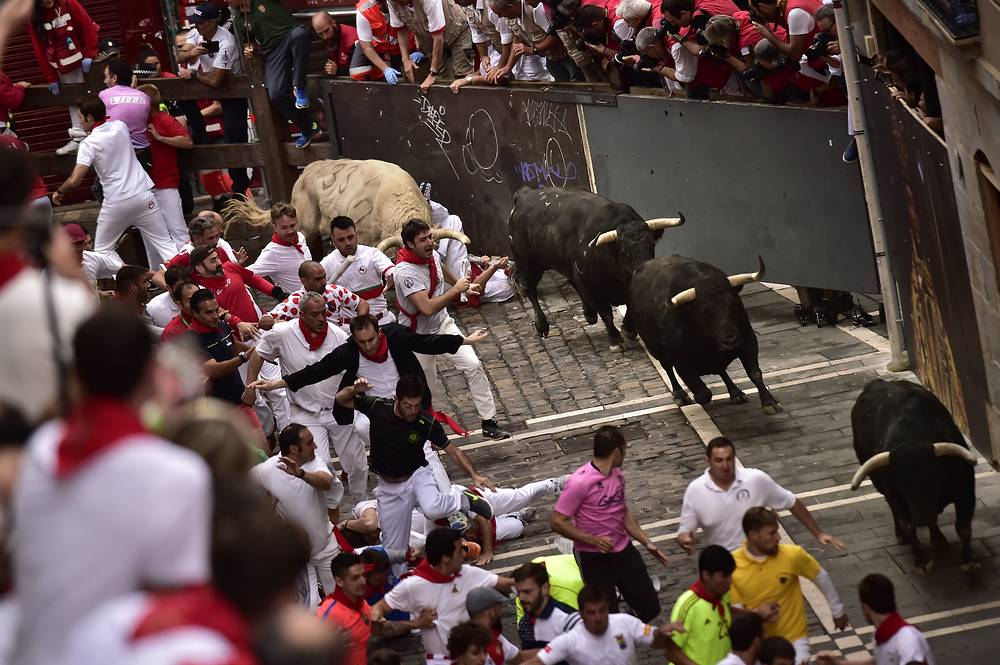 Revellers run in front of Jandilla's fighting bulls