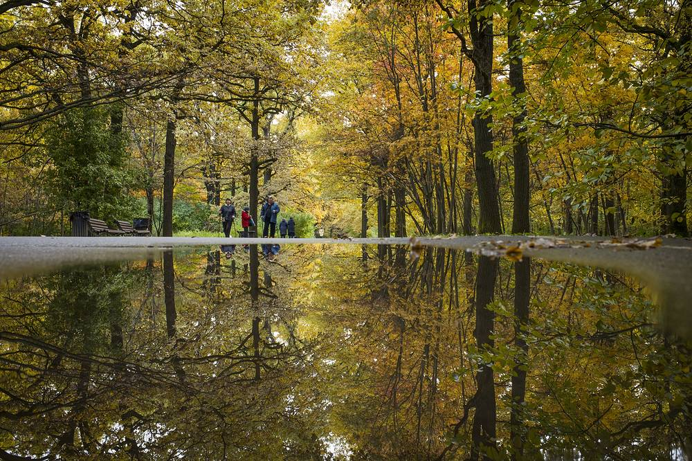 People walk along a path surrounded by autumn trees reflected in a puddle, in the park in Moscow