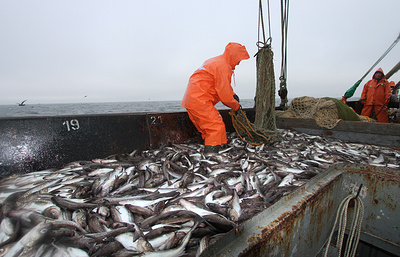Russian fisheries agency starts revoking catch quotas from foreigners-controlled companies