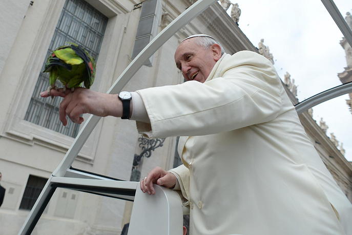 Pope Francis blessing a parrot of a believer