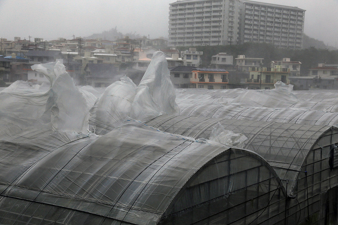 Consequences of the typhoon on the island of Okinawa, southern Japan