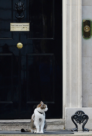 British Prime Minister David Cameron has a cat named Larry
