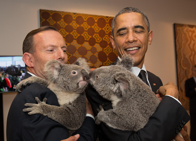 On the sidelines of the G20 summit in Brisbane world leaders had an opportunity to meet with koala bears