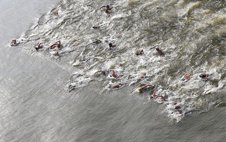 Swimmers competing in the men's 25km open water race, August 1