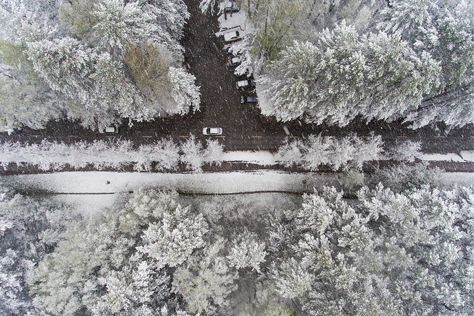 Cars moving along snow-covered trees during a spring snowfall in the scientific research town of Akademgorodok, Russia, May 17