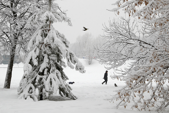 A woman walks her dog during a snowfall in south-western Moscow