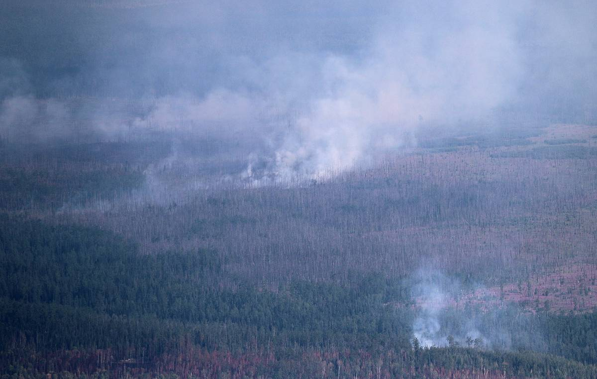 Firefighters combating wildfires on 266,400 hectares in Russian regions