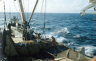 A fishing trawler off Kamchatka coast (Archive)