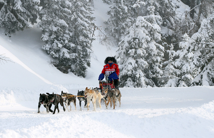 Musher Silvia Furtwangler of Germany and her sled dogs