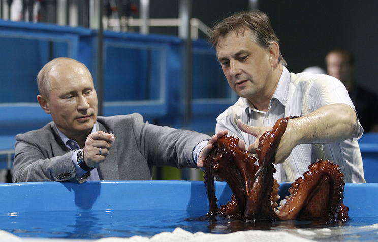 Vladimir Putin views an octopus at the construction site of Vladivostok Aquarium, 2012