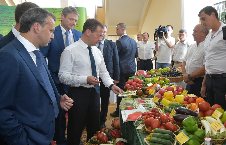 Russia's PM inspects domestic agricultural products