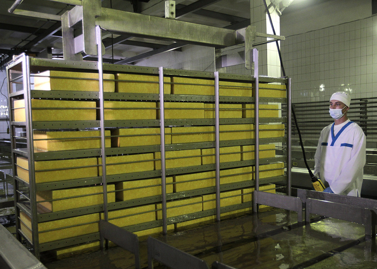 Blocks of cheese at a cheese plant, in Mena, Ukraine
